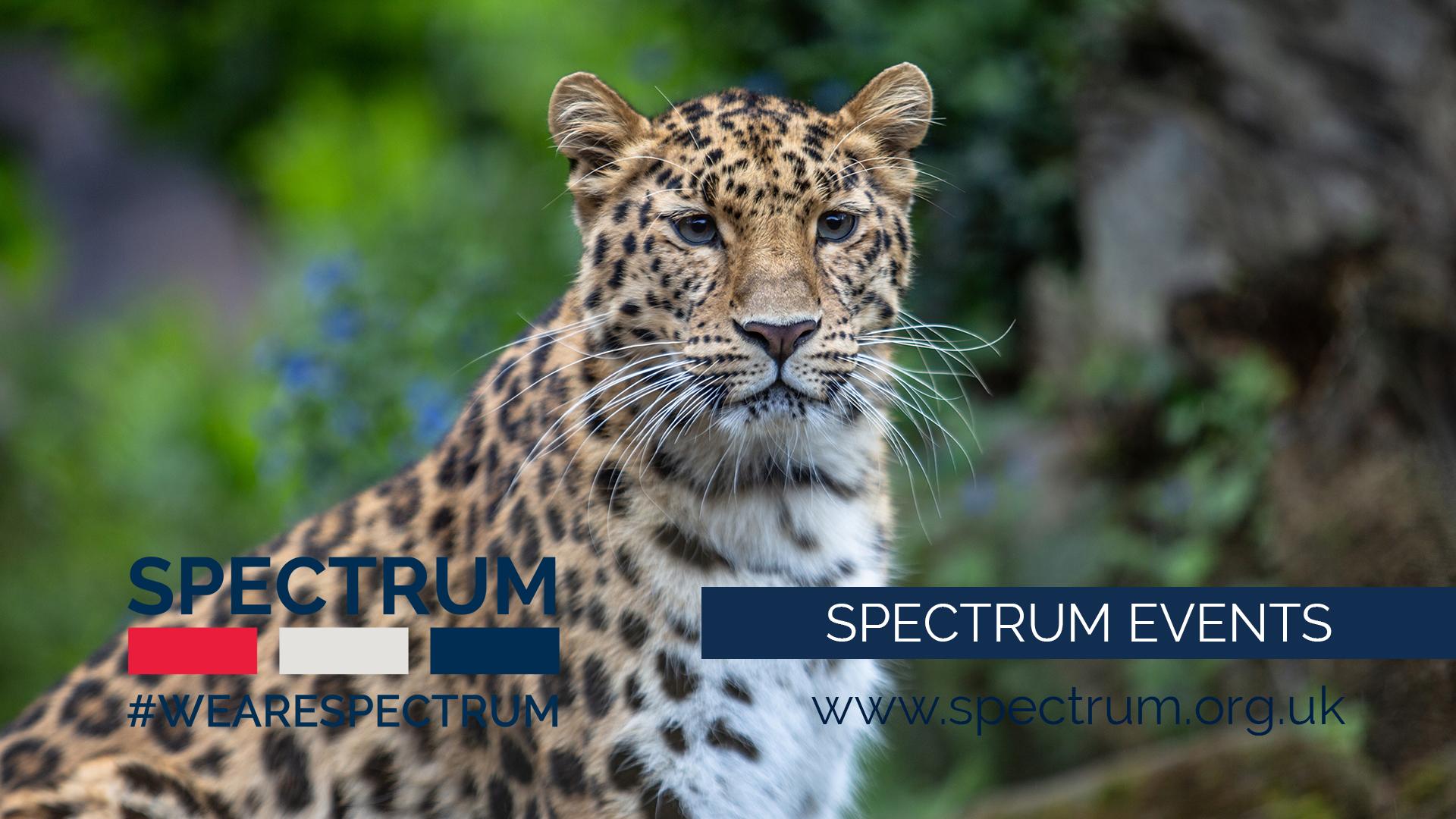 Events at Spectrum